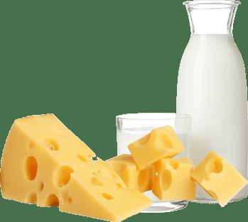 チーズやヨーグルトなどの乳製品