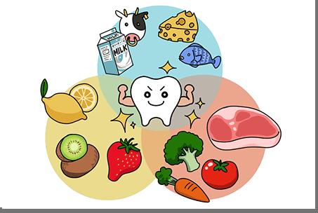 歯と食べ物の図