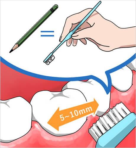 よしむらファミリー歯科の磨き方のイメージポイント1